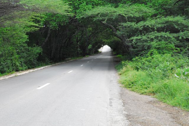 One of a number of natural tunnels